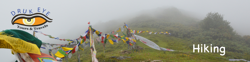 Prayer flags on a pass while hiking